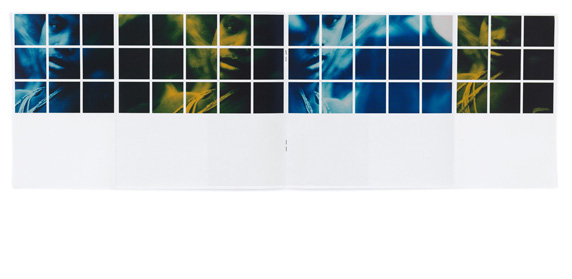 claudia-10.jpg - estúdio lógos design gráfico - julio mariutti