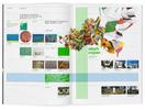 bamboo-31-02.jpg - estúdio lógos design gráfico - julio mariutti