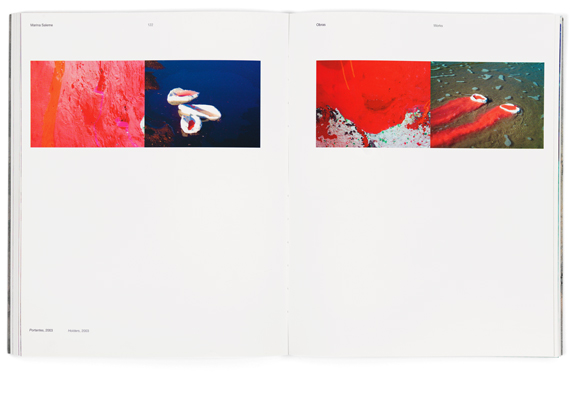 marinasalemelivro-05.jpg - estúdio lógos design gráfico - julio mariutti